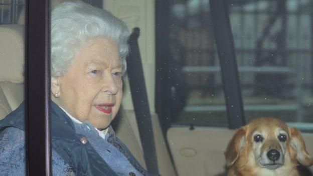 الملكة في سيارة وإلى جوارها أحد كلبيها