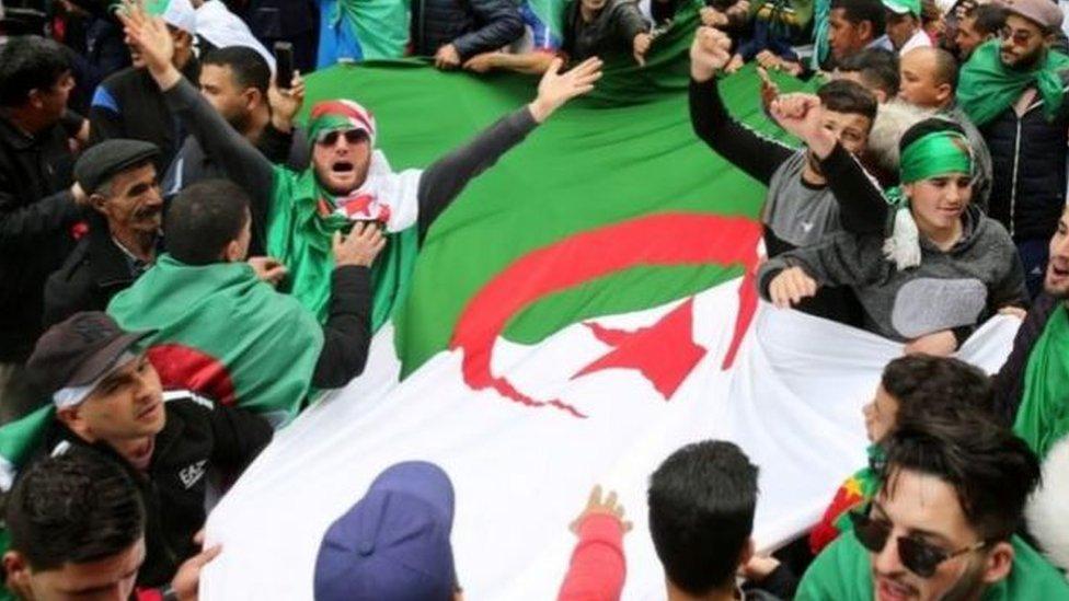 جزائريون يرفعون علم بلادهم في الجزائر العاصمة