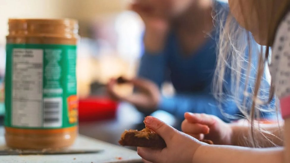 الأطفال الذين لديهم أشقاء أكبر منهم أقل عرضة للإصابة بحمى القش والإكزيما
