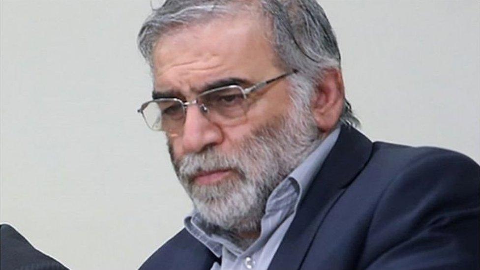 محسن فخري زاده كان مدير منظمة البحث والابتكار التابعة لوزارة الدفاع الإيرانية