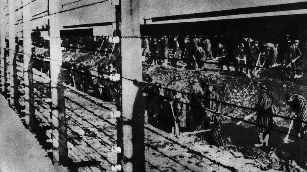 سجناء معسكر أوشفيتز لاعتقال اليهود يحفرون حفرة بالقرب من السياج